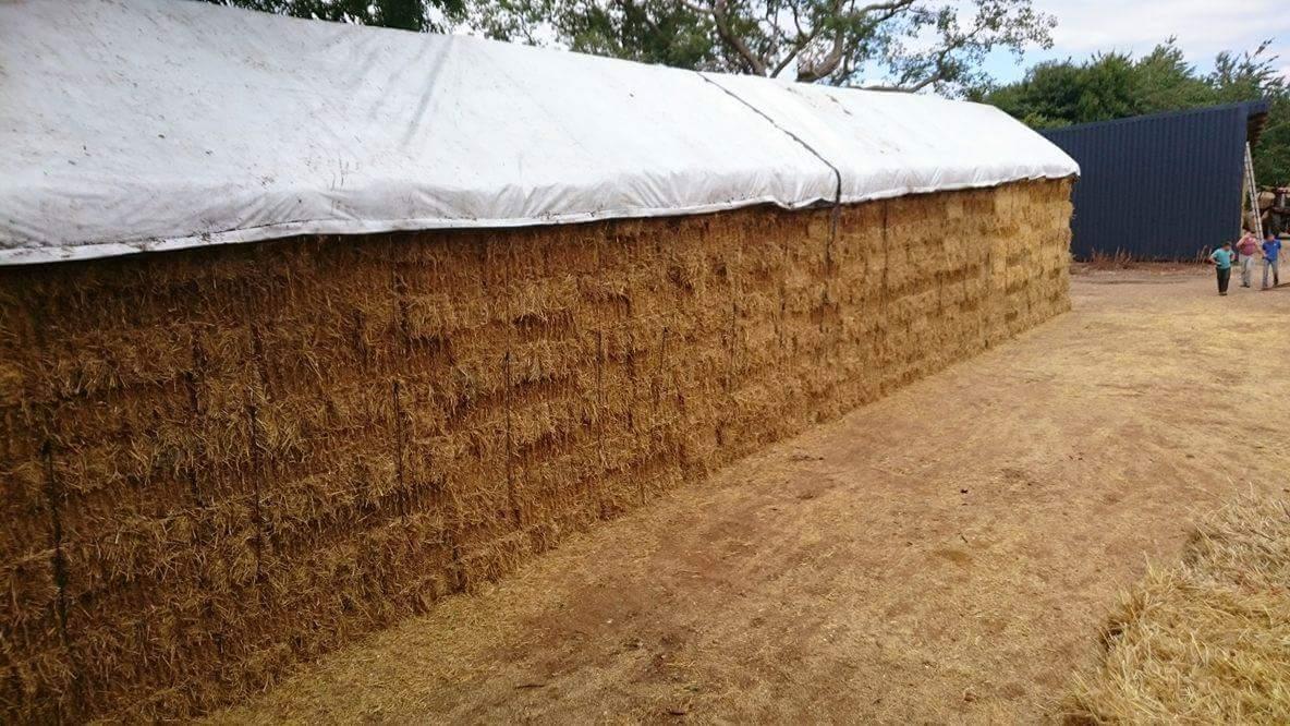 prelate agricole